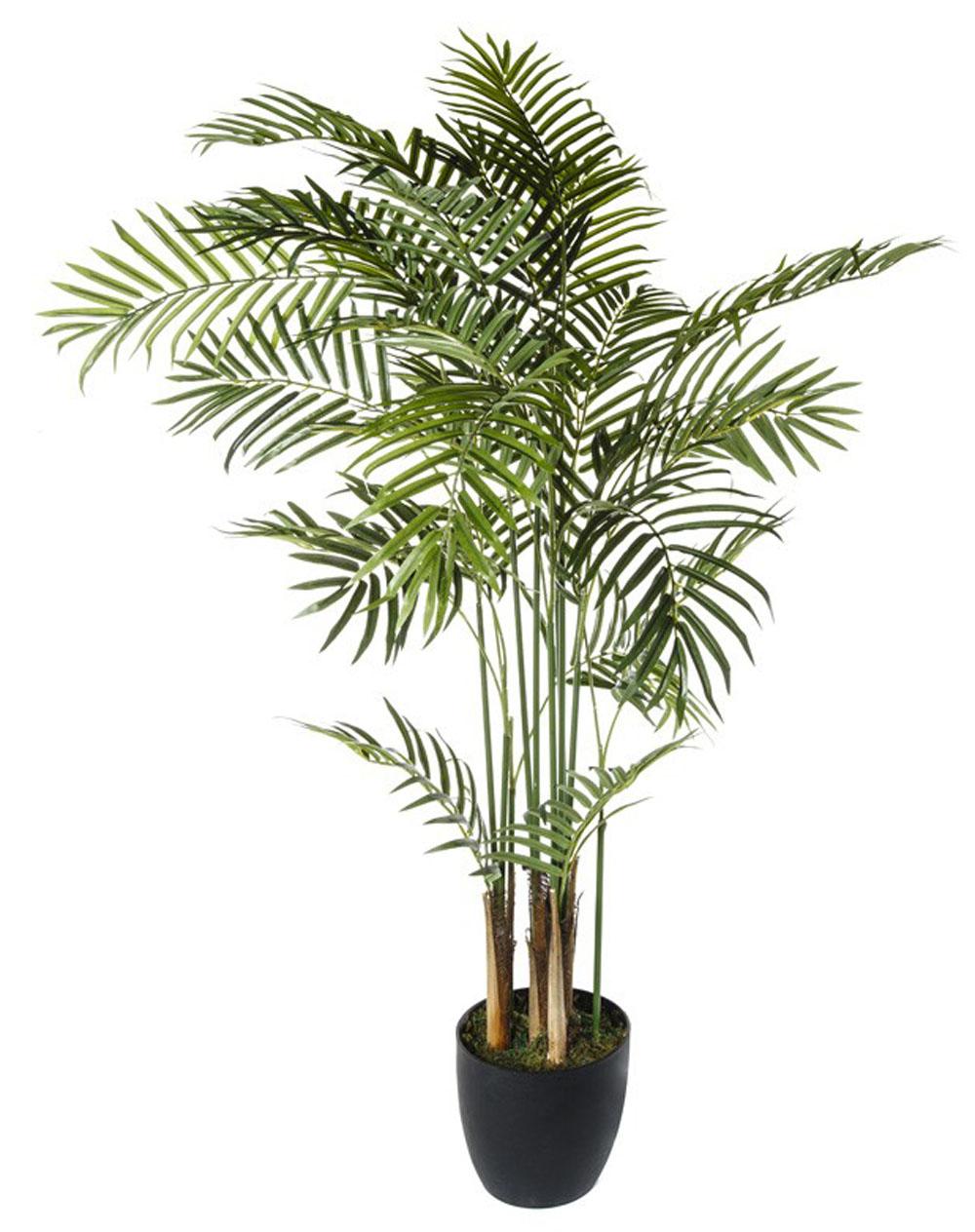 Plante artificielle palmier dim h 120 cm for Plante artificielle palmier